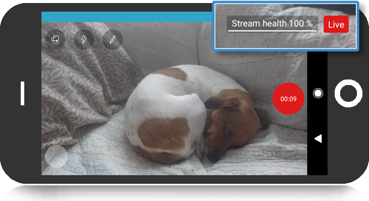 stream health screen